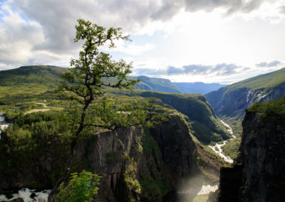 scenic landscape with canyon, river mountains, waterfall and a single tree - vintage